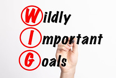WIG - Wildly Important Goals acronym with marker, concept background