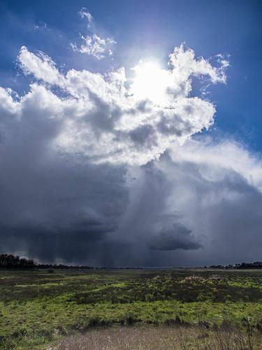 Come rain, come shine...