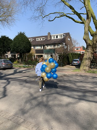 Heliumballonnen Molenlaan Hillegersberg Rotterdam