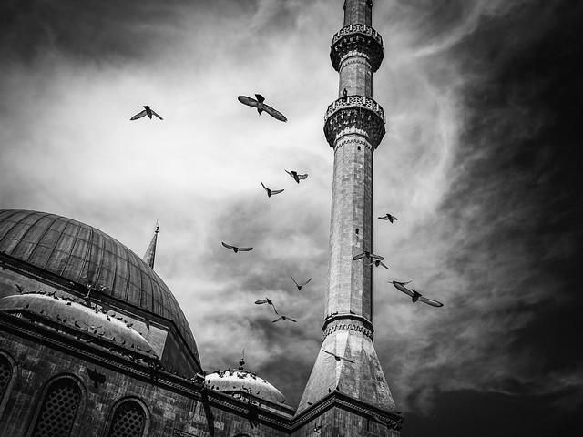 ACSPhoto_La mosquée_Richard Duret