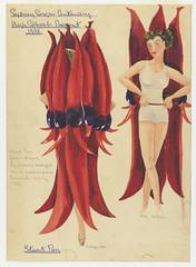 Sturt's Desert Pea: Sydney Sesqui-Centenary High Schools Pageant 1938