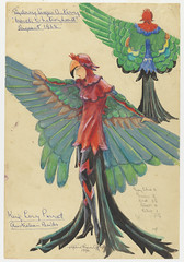 King [Lory] Parrot: Sydney Sesqui-Centenary 'March to Nationhood' Pageant 1938