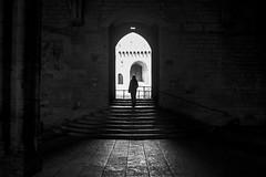 Contre-jour, Palais des Papes, Avignon