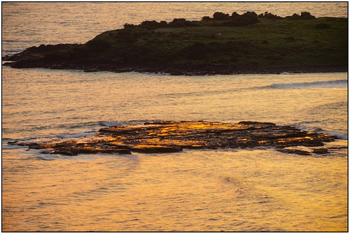 The Pelican Isle...
