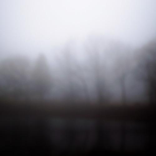 Lakeside Fog 056