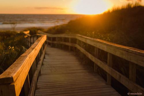 Sunshine, wood and the sea