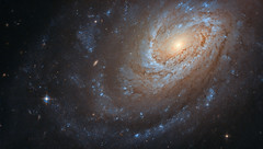 Hubble Captures a Cannibal Galaxy