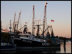 Shrimp Boats at the Sponge Docks