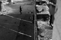 Passant et pigeons à Avignon