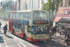YN55 NFA (Route 14) at Western Road, Brighton