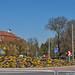 2020.04.03. Szegváron járt a tavasz - Fotók:PURGEL ZOLTÁN©
