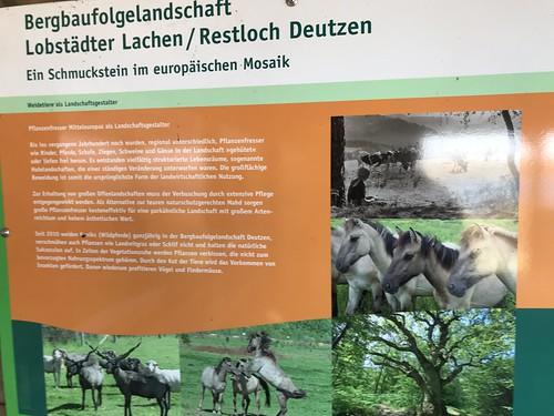 Neuseenland-Radtour