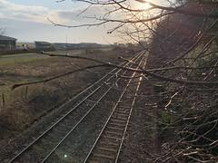 2020_Railway_buds