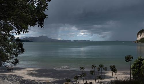 Flaxmill Bay Coromandel New Zealand