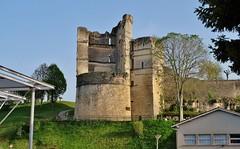 Chateau de Montguyon, Haute Saintonge, Charentes - Photo of Sauvignac