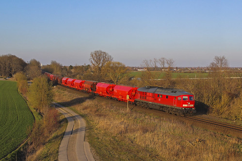 DB Cargo 233 452, Schönebeck (D)