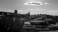 Vue depuis les Arènes d'Arles