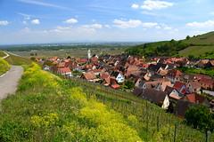 Katzenthal (Alsace)