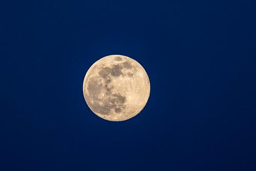 Lever de lune rose.