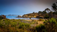 Whalers Cove at Point Lobo