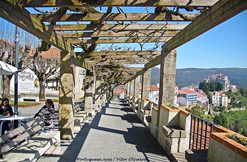 Jardim do Largo Alberto Leitão - Penacova - Portugal 🇵🇹