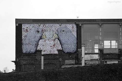 Street Art Ghent, Belgium (Ericailcane)