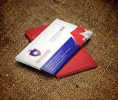 Business Card Design for The Focus School in Karachi