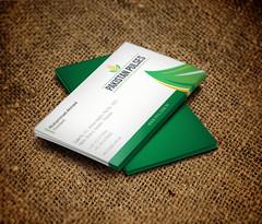Business Card Design Pakistan Pulses & Indentors Association