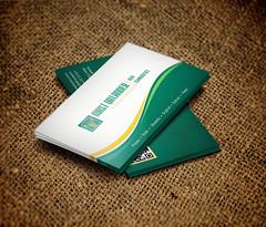 Business Card Design Mast Qalandars group of Companies