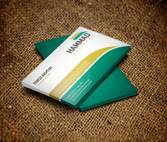 Business Card Design for Hammad Builders