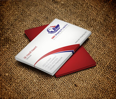 Business Card Design for ABS Shipping & Logistics