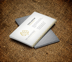 Business Card Design for MR Industries