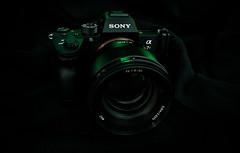 Sony a7RIII + FE 85mm f/1.8