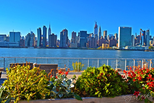 Hunter's Point South Park View of Midtown Manhattan Skyline Long Island City Queens New York City NY P00494 DSC_2448