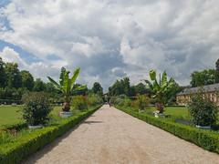 Allee zum Apollotempel im Schlossgarten Schwetzingen, Deutschland