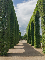 Topiary hedge arches in the Schwetzingen Palace Garden, Germany