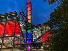 Diversity Day 2019 am RheinEnergieStadion in Köln, Deutschland