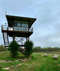 Wildlife Observation Tower