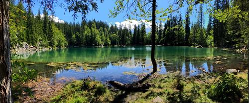 Lac Vert - Savoie - Alpes - France