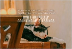 Irving Berlin When I'm worried and I can't sleep I count my blessings instead of sheep And I fall asleep Counting my blessings