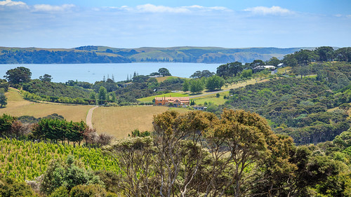 View from Mudbrick Vineyard, Waiheke Island