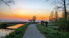 'Good morning from the Netherlands' - Polder Stein - Haastrecht 🇳🇱
