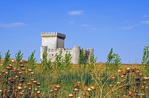 Castillo de Villalonso  (Spain)