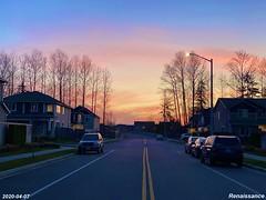 Fernwood Sunset