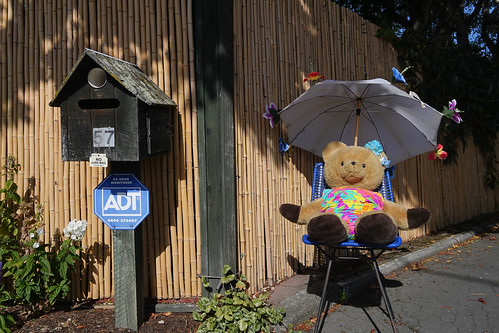 another street-side bear spreading cheer