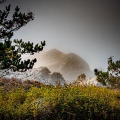 Rocks in Fog at Point Lobo