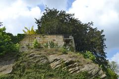 An der Burg Bentheim (136FJAKA_3612)