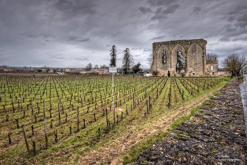 Saint-Émilion Grand Cru. Château