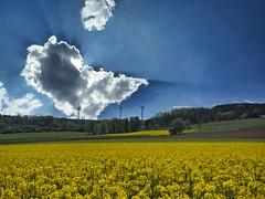 Osterspaziergang in Frühlingslandschaft