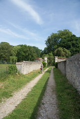 A Sunny Stroll - Photo of Nesle-le-Repons